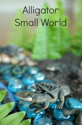 Alligator Small World-Sensory and Science Play for Preschoolers