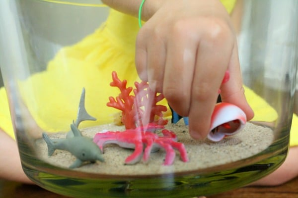 Create a Hermit Crab Small World