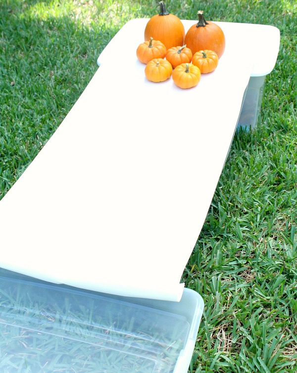 Rolling Pumpkin Painting Setup
