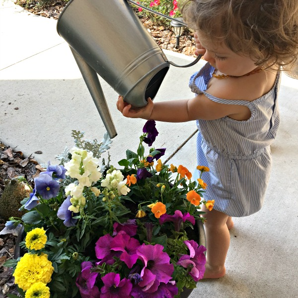 watering the flowers