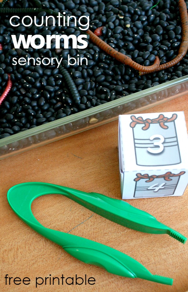 counting worms sensory bin with free printable number and number word cubes