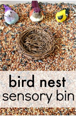 Bird Nest Sensory Bin for toddler sensory play or a preschool bird theme