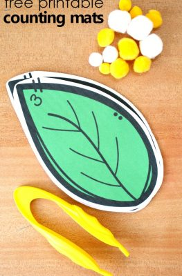 Caterpillar Egg Counting Mats