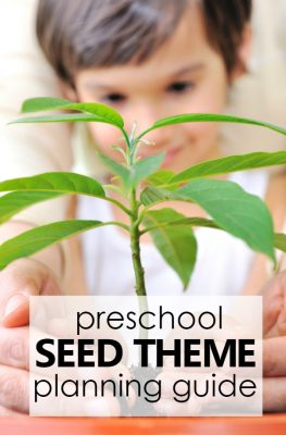 Preschool Seed Theme Activities