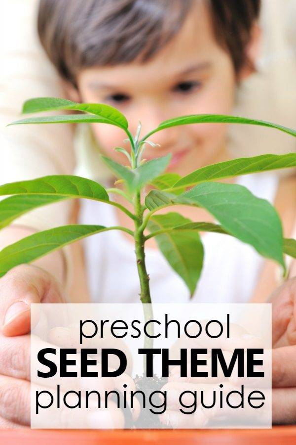 preschool seed theme planning guide with printable lesson plans, online activities, and more for teaching preschoolers about seeds