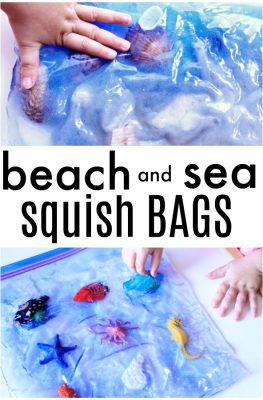 Beach and Ocean Sensory Squish Bags