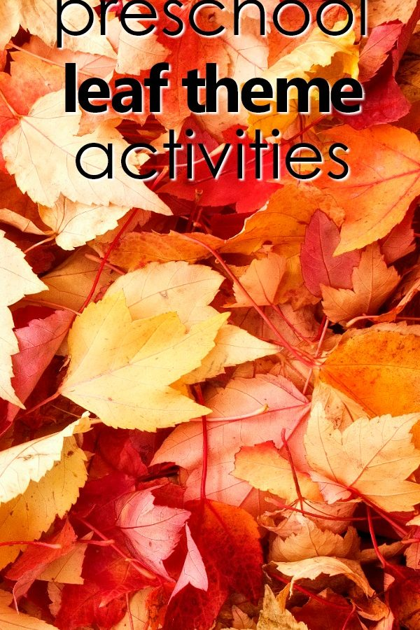 Preschool Leaf Theme Activities-Teaching tips, learning activities, play ideas, free printables, printable lesson plans, favorite apple videos and more for your leaf theme activities