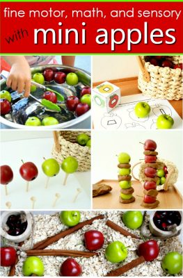 Fall Activities with Mini Apples