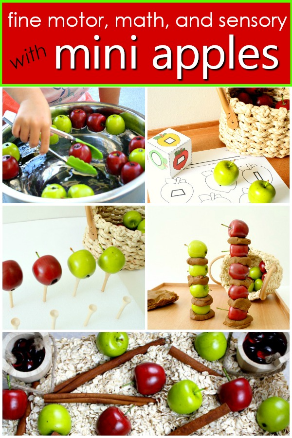 Fall Activities with Mini Apples-Fine motor activities, sensory play ideas, free printables and more to do with your apple manipulatives