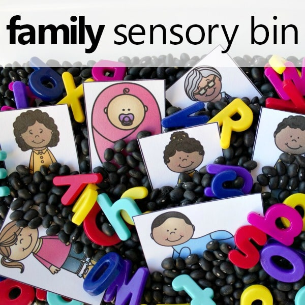 Family Sensory Bin for Toddlers and Preschoolers
