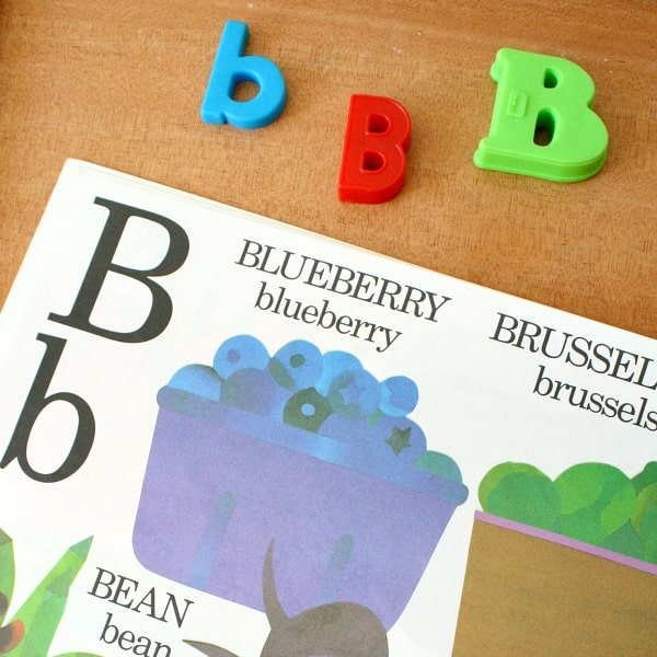 When Teaching With Alphabet Books We Can Also Work On Phonemic Awareness And Introduce The Concept Of Beginning Sounds In Eat Pictured Above
