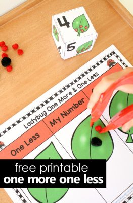 One More One Less Number Sense Ladybug Math