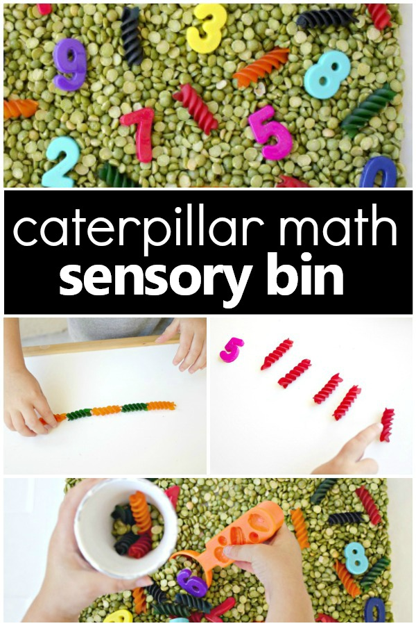 Counting Caterpillars Spring Sensory Bin with fun preschool math activities #preschool #sensoryplay #math