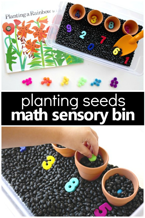 Counting Seeds Gardening Sensory Bin-Pretend play and math activity for toddlers and preschoolers #spring #preschool #math #kidsactivities
