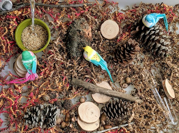 Bird Sensory Bin and Loose Parts Play
