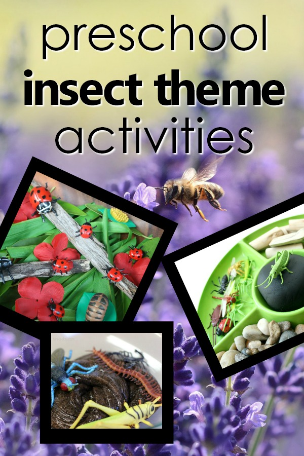 Bug Theme Activities for Kids-Preschool Insect Theme Resources, Printable, and Bug Activities #prek #earlychildhood #preschoolthemes