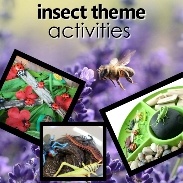 Preschool Insect Activities for a Bug Theme
