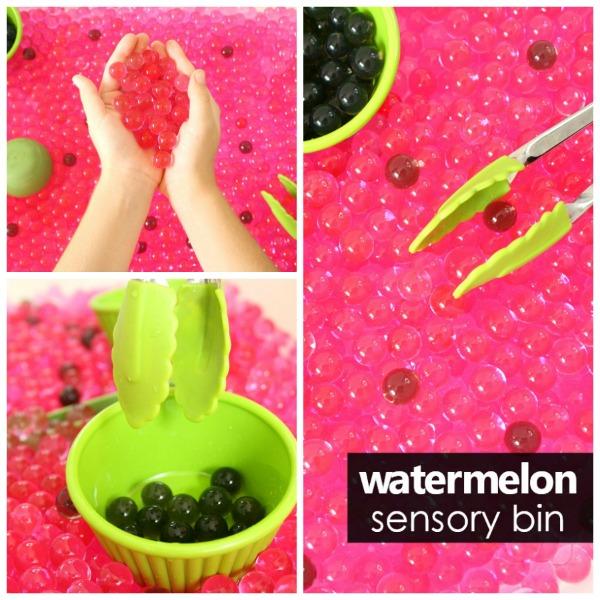 Watermelon Sensory Bin-Square