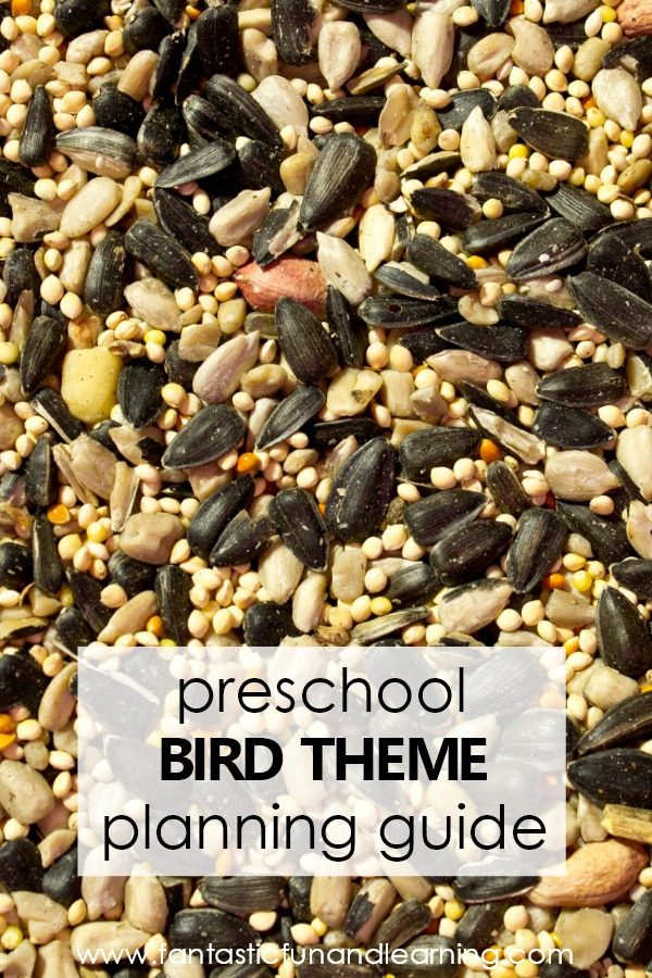 Preschool Bird Theme Lesson Planning Guide #preschool #lesonplans #kindergarten