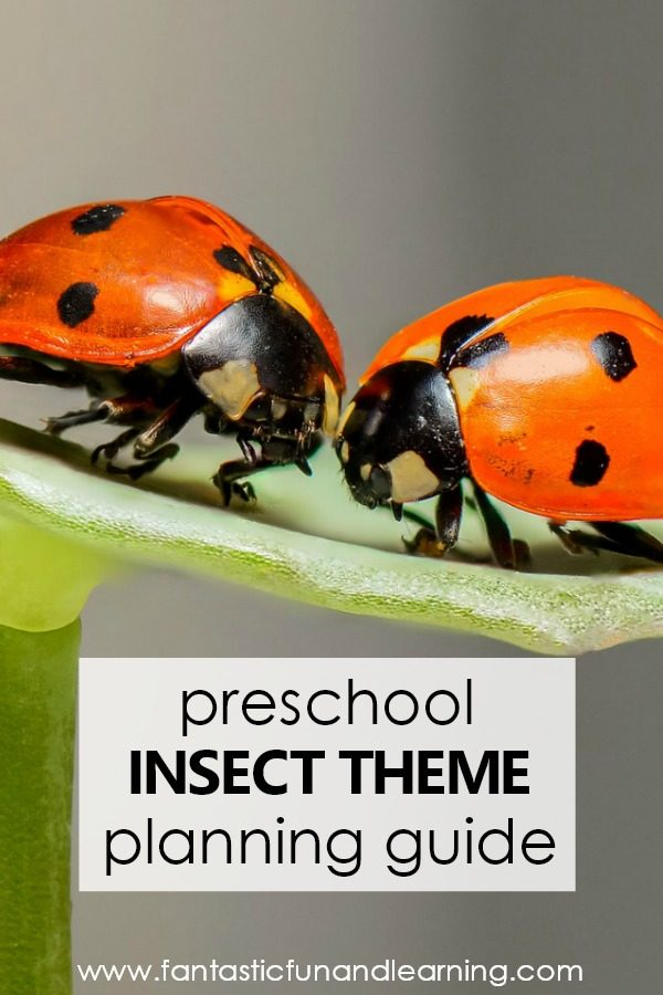 Preschool Insect Theme Lesson Planning Guide #preschool