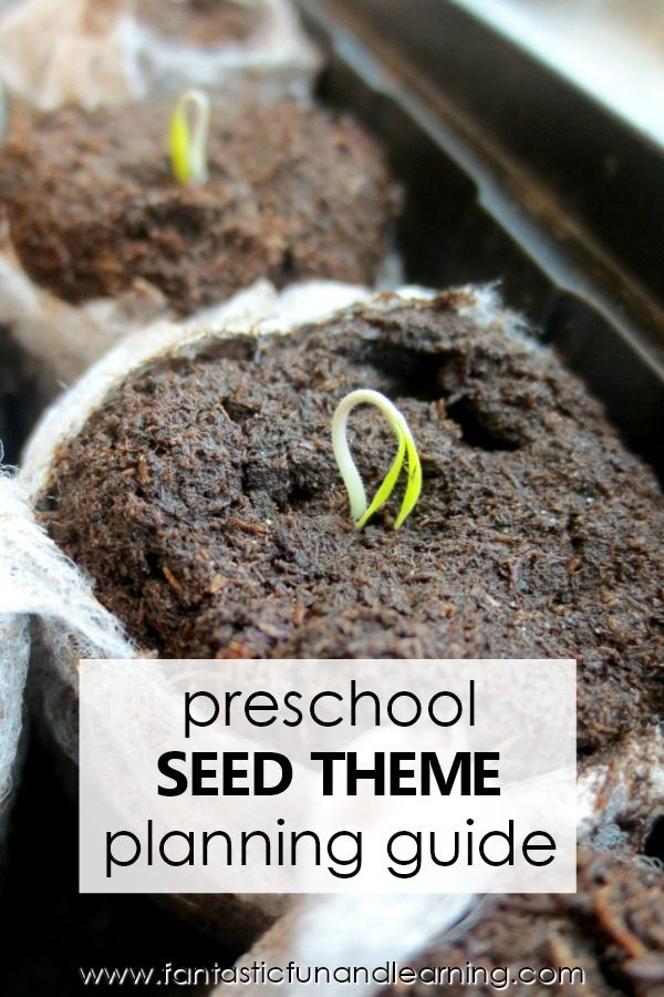 Preschool Seed Theme Lesson Planning Guide #preschool