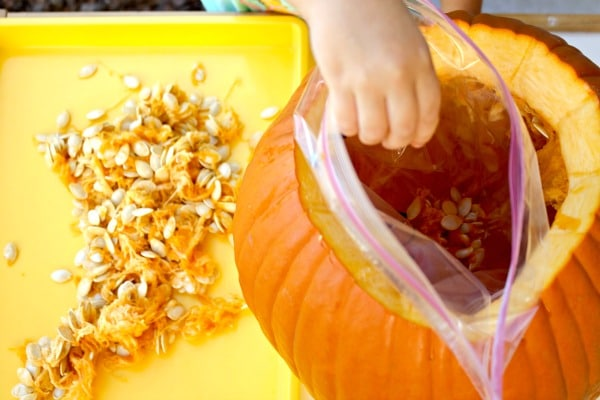 pumpkin sensory bag_filling bag