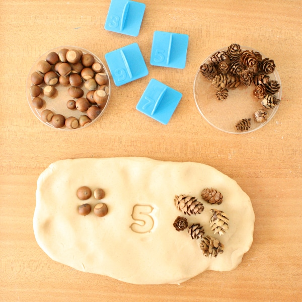 Loose Parts Preschool Math-One More One Less