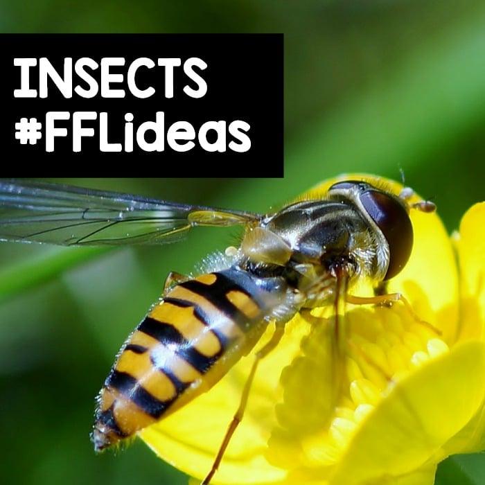 Preschool Insect Theme Activities