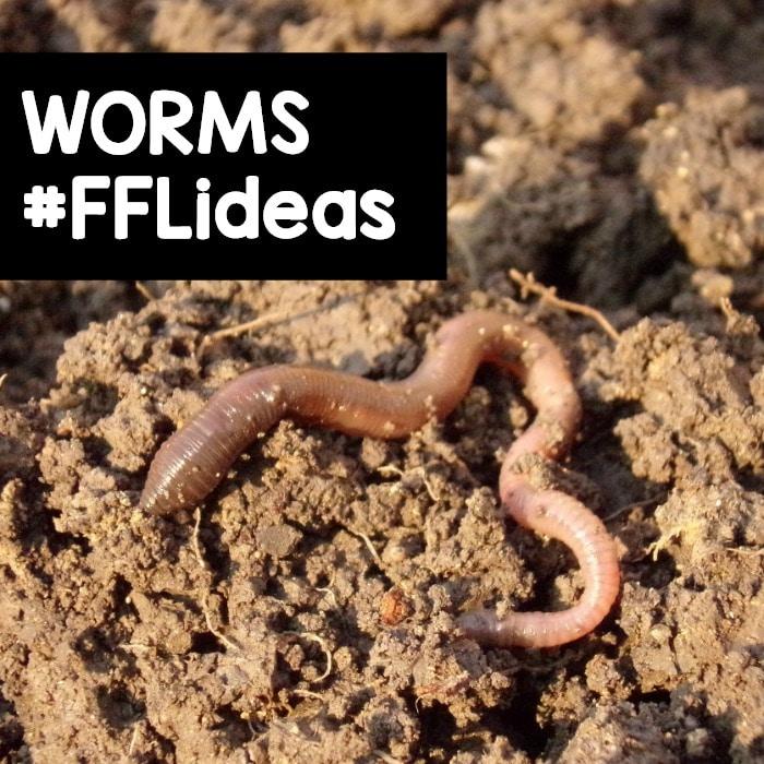 Preschool Worm Theme Activities