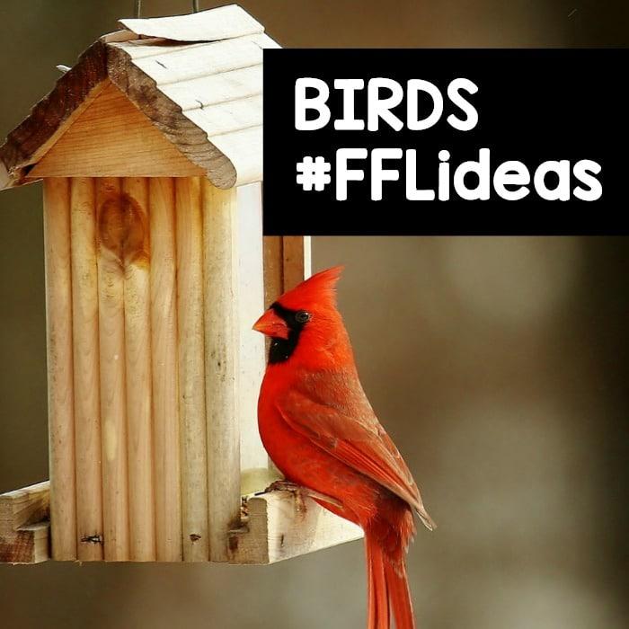 Preschool Bird Theme Ideas