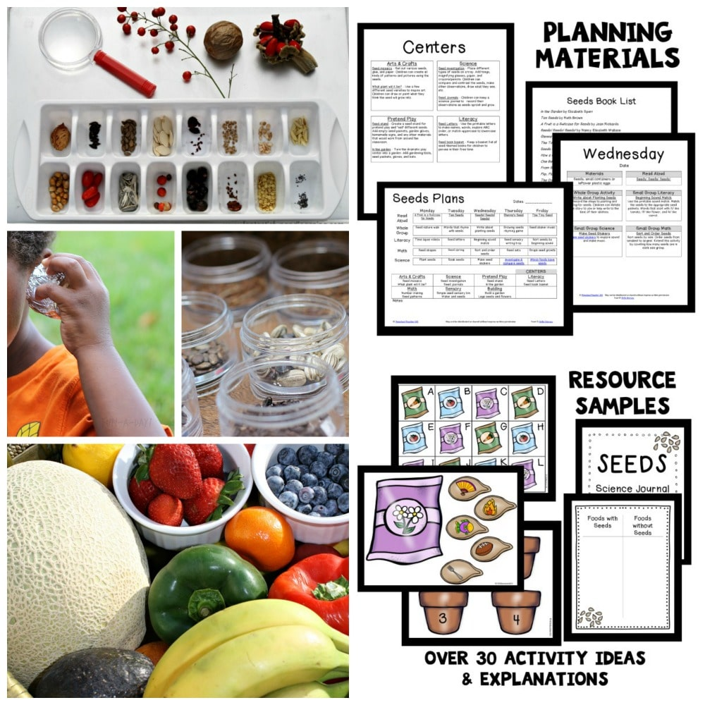 Seed Theme Preschool Lesson Plans