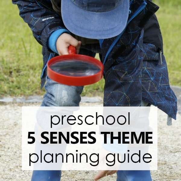 Theme Planning Guide -Preschool 5 Senses Theme
