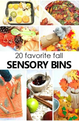 20 Favorite Fall Sensory Bin Ideas for Toddler and Preschool Fall Sensory Play Activities