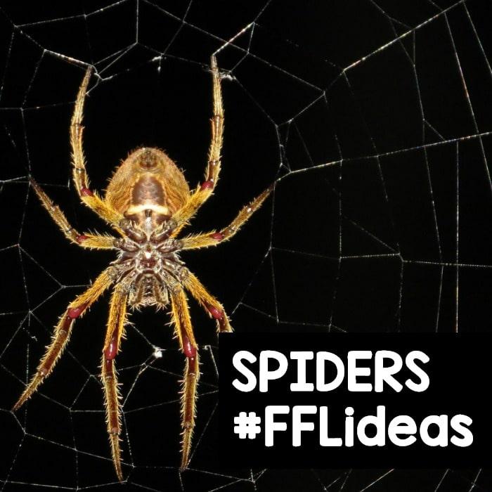 Spider Theme Activities for Preschool