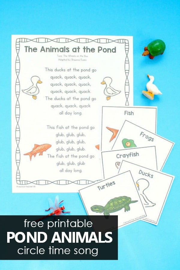 Free printable Animals at the Pond Circle Time Song Freebie for Preschool and Kindergarten Pond Theme