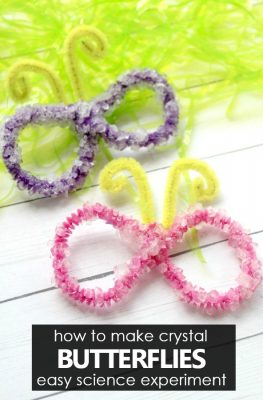 How to make crystals. Easy crystal butterfly craft and science experiment for kids.