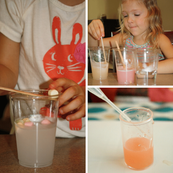 Easy Science Experiments to Do at Home with basic materials