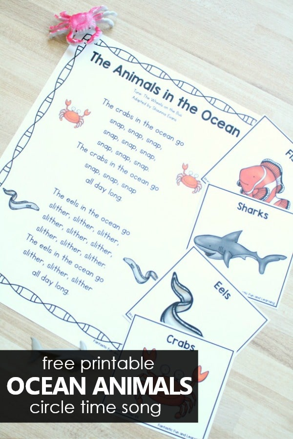 Ocean Animals song for summer preschool circle time activities