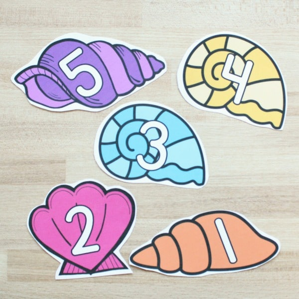 Seashell Counting Pieces