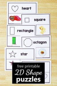 Free printable 2D photo shape puzzles for preschool and kindergarten