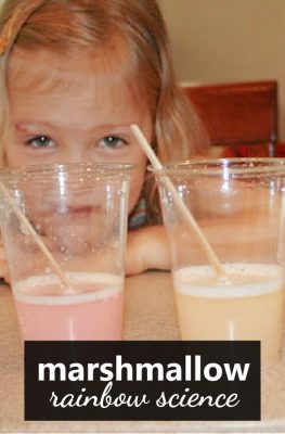Preschool Science-Marshmallow Science Experiment (1)